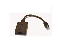 LENOVO ThinkPad Universal USB3.0 to DP Adapter